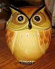 Poppytrail Golden Hooty owl cookie jar