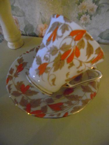 Royal Grafton Ashley Orange bone china cup and saucer England