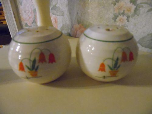 Vintage Posy shop salt and pepper shakers Triumph China ridges