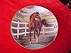 Danbury Mint Cigar, collectors horse plate