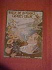Where the morning glories grow, sheet music 1917