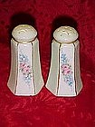 Hand painted victorian style salt and pepper shakers