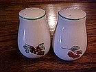 Berries and grapes salt and pepper shakers