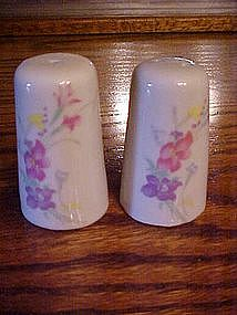 Porcelain shakers with hand painted floral pastel
