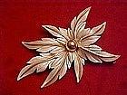 Sarah Coventry white poinsettia pin