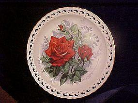 American Spirit, The American Rose Garden, Paul  Sweany