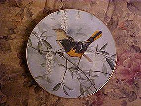 Dawn's Radiance, A treasury of songbirds,Rob Stine
