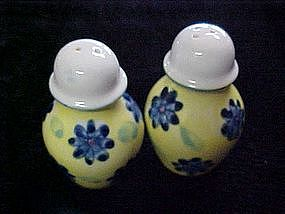 Hand painted porcelain salt & pepper shakers