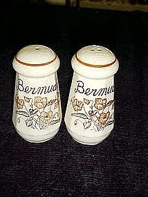 Souvenir salt and pepper shakers from Bermuda