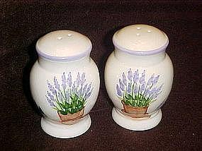 Lavender in flower pot, salt and pepper shakers