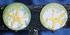 Vintage Lucite real starfish earrings, screw backs