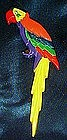 Large tropical bird parrot pin, rhinestone eye