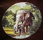 The Asian Elephant collector plate, Endangered Species