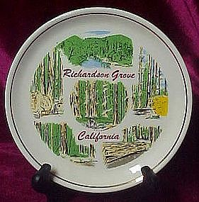 Souvenir plate, Richardson Grove California Redwoods