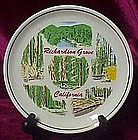 Souvenir plate, Richardson Grove California Redwoods