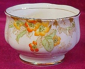 "Royal Standard ""Blossom""  bone china open sugar"