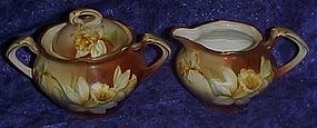 RS Germany hand painted Daffodil creamer and sugar