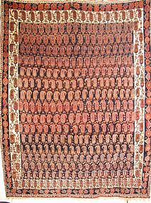 Exceptional Antique Afshar Carpet