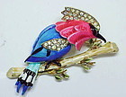 Corocfraft woodpecker trembler brooch