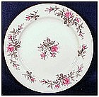 Roxanne by Kyoto dinner plate