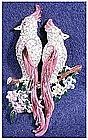 Coro purple cockatoos duette