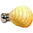 Antique Shell Shaped Scent Bottle