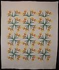 Daffodils Quilt: Circa 1920; Pennsylvania