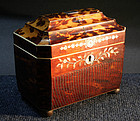 Rare Pressed Tortoiseshell English Regency Tea Caddy