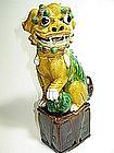 A 19th C. Chinese sancai lion / three color fudog lion