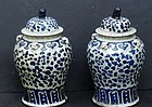 Pair of Chinese Porcelain Blue and White Jars, 20th C.
