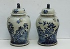 Pair of Chinese Blue and White Temple Jars, 20th Century