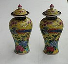 Pair of Chinese Porcelain Covered Urns, early 20th C