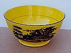 Canary Transfer Decorated Bowl, E 19th C