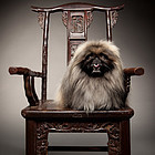 Antique Chinese Chair with bamboo design