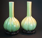 Pair of garlic form Chinese pocelain vases with base