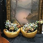 A pair of jade agate tree in porcelain pot