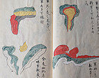 Guide to clouds - Hand-painted manuscript book of military science 19c