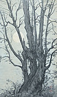Rising moon Ink Painting by Zen Priest Kimura Hyakuboku