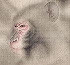Monkeys, Antique Japanese Scroll by Mori Kansai