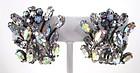 Beautiful Schreiner New York Rhinestone Earrings