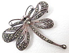 Charming Sterling Marcasite Dragonfly Pin