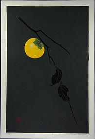 japan Haku Maki 81-31 (persimmon)