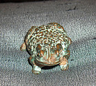 china old bronze Frog  yuan
