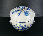 China Antique Porcelain Jar 19th Century Blue White