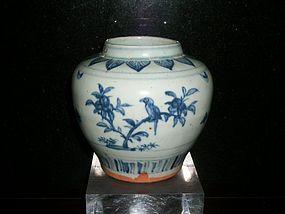 CHINESE MING JAR