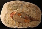 An Egyptian wall Fresco Fragment painting of a Duck