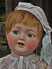 Pretty German Character Bisque Toddler Doll