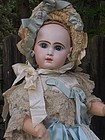 Stunning large French Bisque Bebe by Jumeau in Jumeau Factory Box