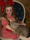 Cute 19th. century Antique Pussy Cat for Doll Display