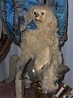 "Rare French "" Cymbalier "" Mechanical Toy Dog by Roullet et Decamps"